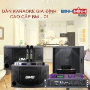Dàn Karaoke Cao Cấp BM 01