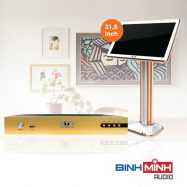 Đầu Karaoke BTE S650 + Màn Hình Cảm Ứng BTE 21,5 Inch Gold
